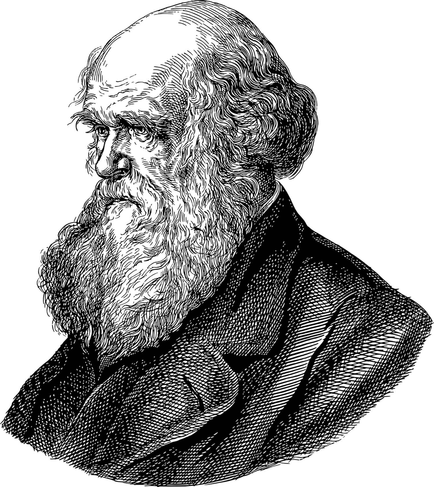 charles darwin porträt