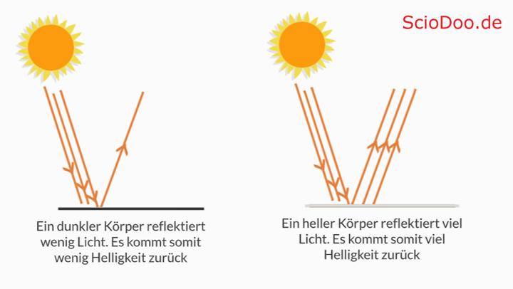 warum-kann-das-chamäleon-seine-farbe-ändern-lichtintensität